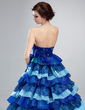 Ball-Gown Strapless Court Train Organza Lace Quinceanera Dress With Beading Cascading Ruffles (021018809)