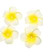 Fashion Imitation Pearls/Foam Combs & Barrettes/Flowers & Feathers (042026841)