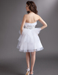 Empire Sweetheart Knee-Length Tulle Homecoming Dress With Beading Cascading Ruffles (022016288)