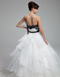 Ball-Gown Strapless Cathedral Train Organza Wedding Dress With Lace Sash Beading Sequins Bow(s) (002012600)