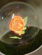 LED Işıklar Klasik Tema Düğün Süslemeleri (131038318)