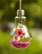 Hanging Bulb Glass Vase (128039214)
