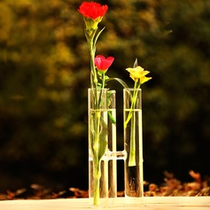 Tube Shaped Glass Vase